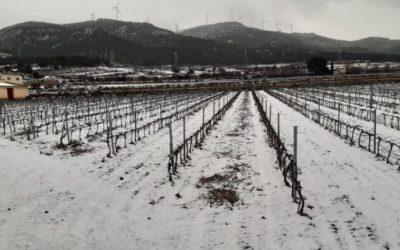 Les multiples avantages de la neige