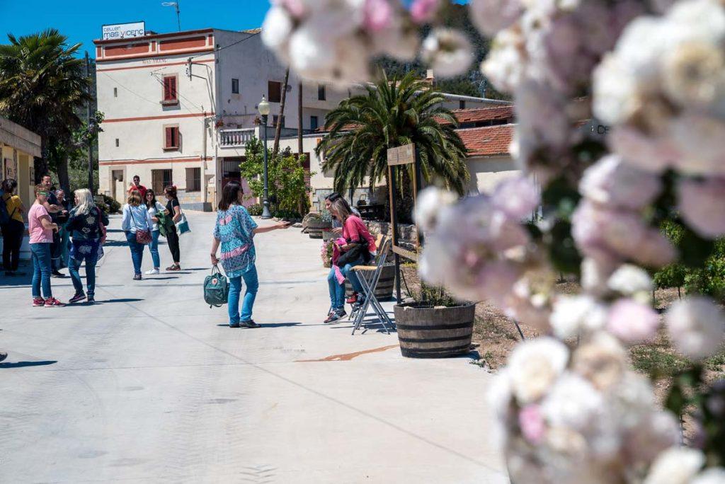 Turismo por mas Vicens