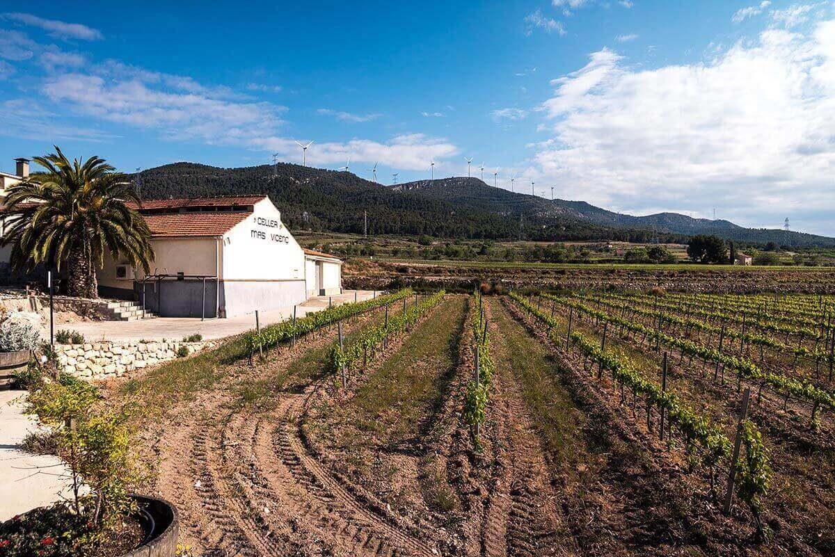 Mas Vicenç - Bodega en Tarragona