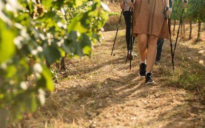 Tarragona ha de crear experiències al voltant del vi
